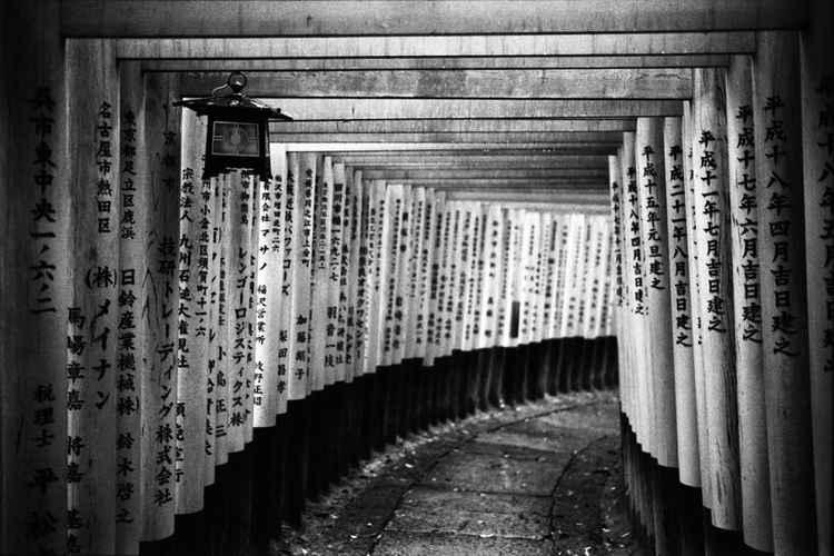 Senbon Torii, Kyoto, Japan