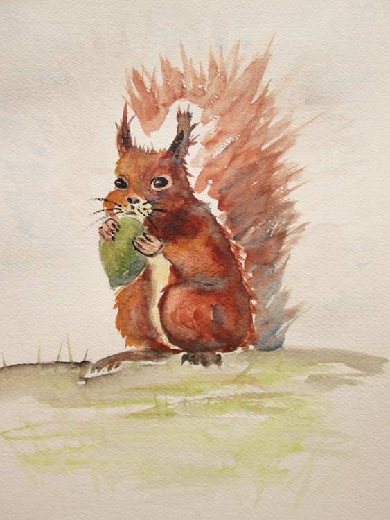"""SQUIRREL"" nature, wild animal, tree, original watercolour - Image 0"