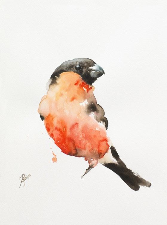 Bullfinch (Pyrrhula pyrrhula) - Image 0