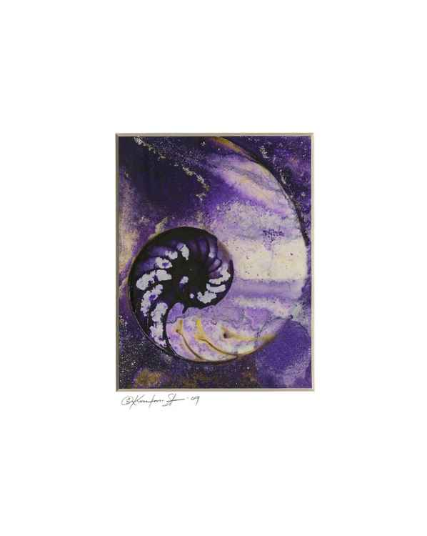 Sea Shell Watercolor Painting, Ocean - Nautilus Shell No. 943 -