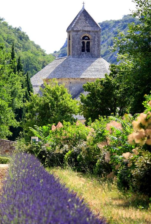 Senaque Abbey through the trees - Image 0