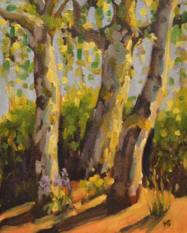 Rustling Birches -