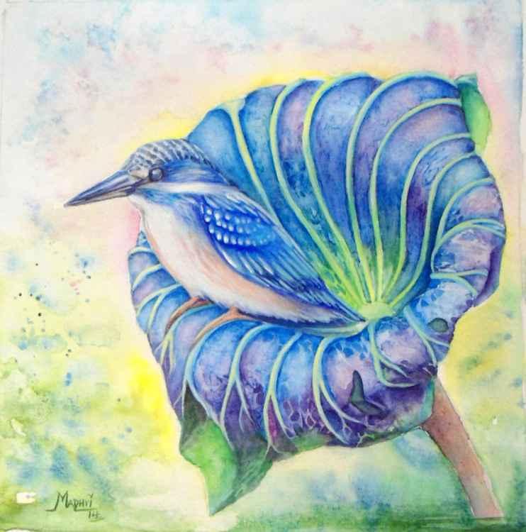 Natures Glory -