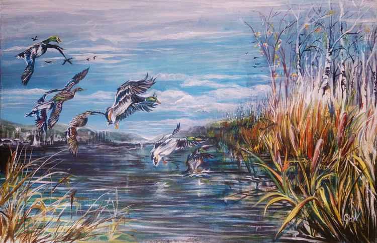 Ducks Down