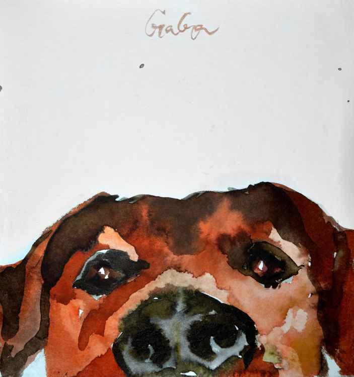 Doggy -