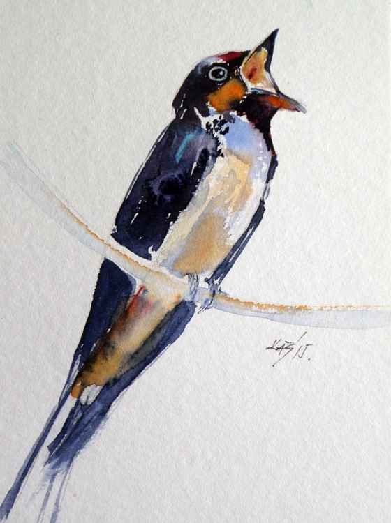 Swallow -