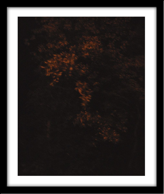 Waiting for the night rain - Image 0