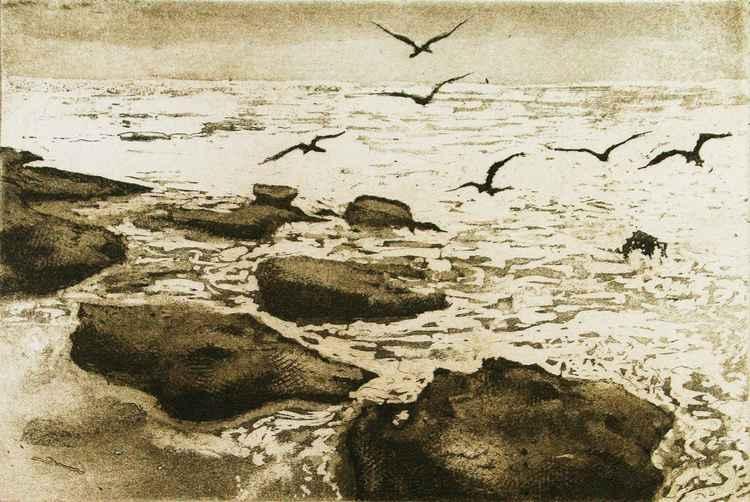 Sea Birds -