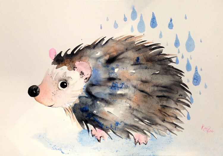 Rainy hedgehog