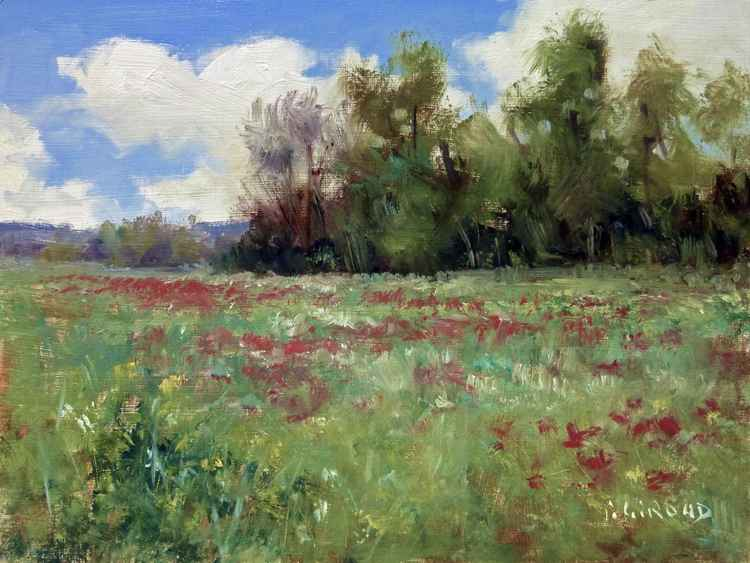 Field in Provence