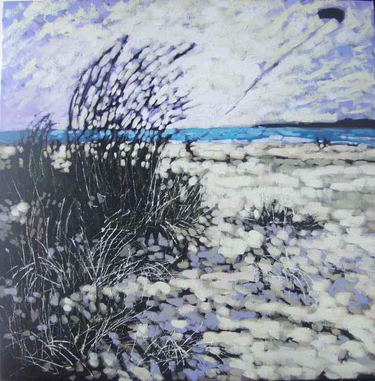 Winter winds - Par sands -