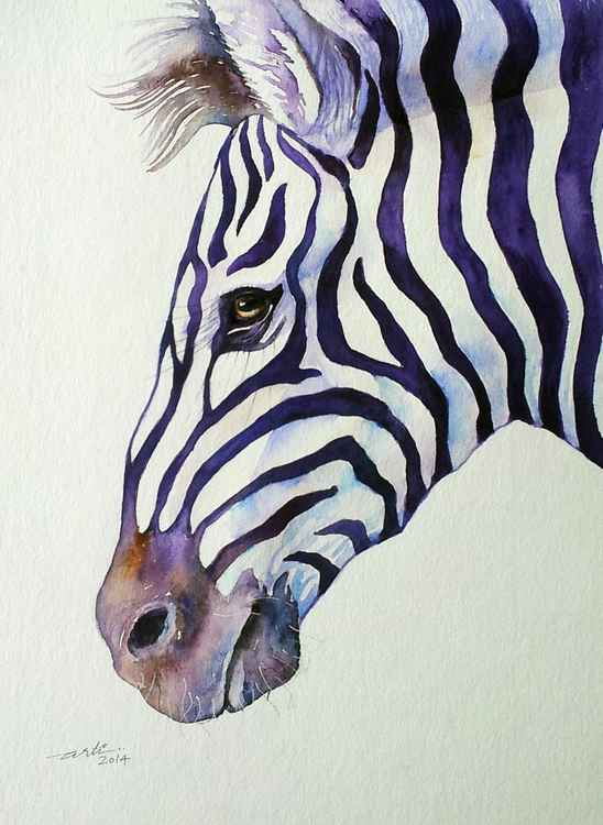 Suave Zebra -