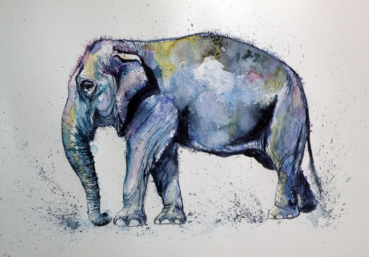 Elephant - Image 0