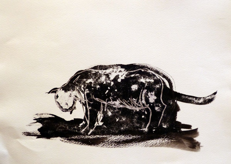 The star cat, ink drawing 29x42 cm (budget offer) - Image 0