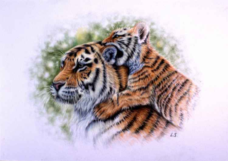 "Tigers Original pastel drawing 25x35cm (10""x14"") -"