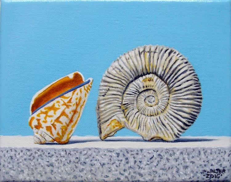 Sea shell n°7 / FREE SHIPPING - Image 0