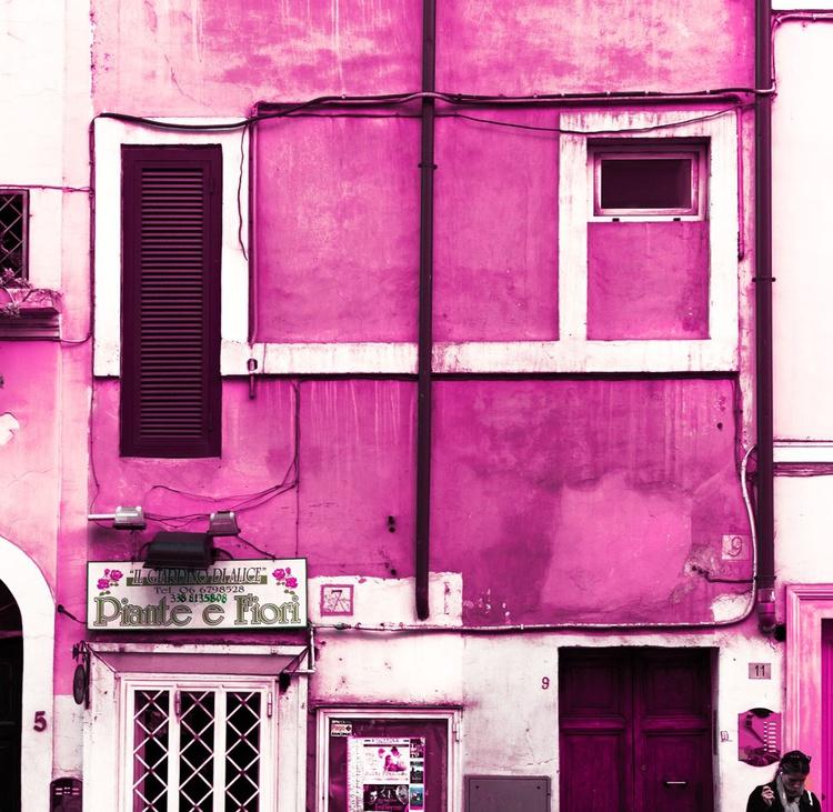Pink Palace - Image 0