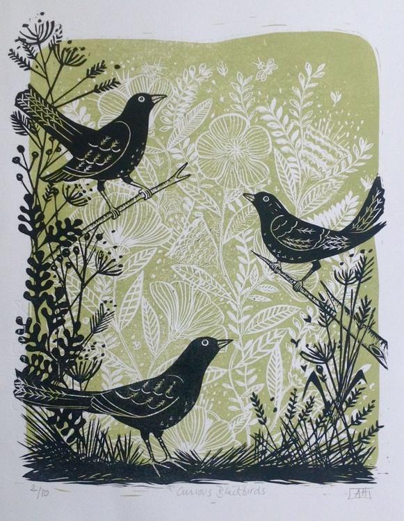 Curious Blackbirds - Image 0
