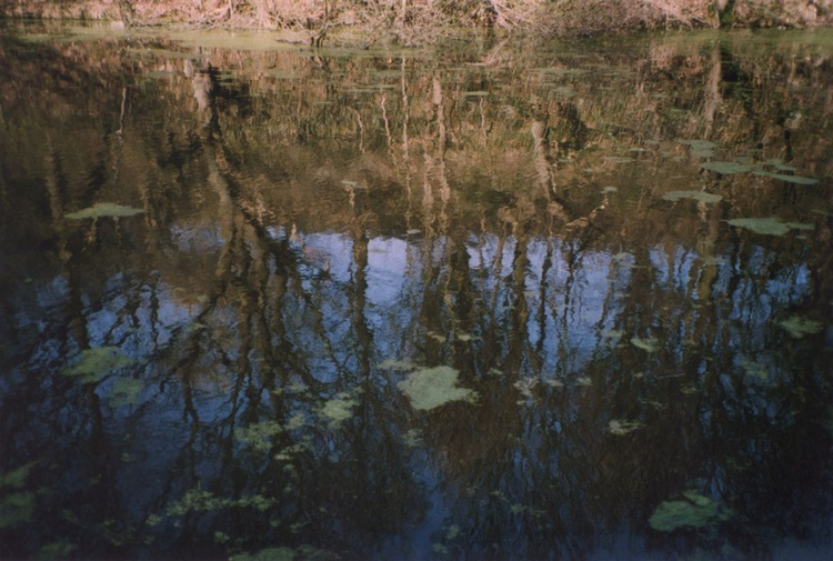 In Water -  1/25 - Unmounted (18x12in) - Image 0