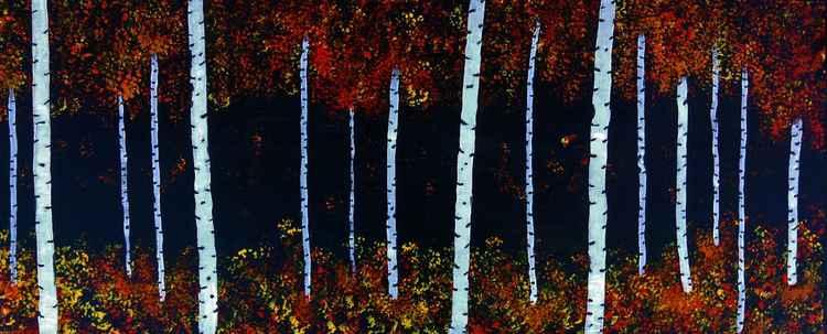 Birch Forest 2 -