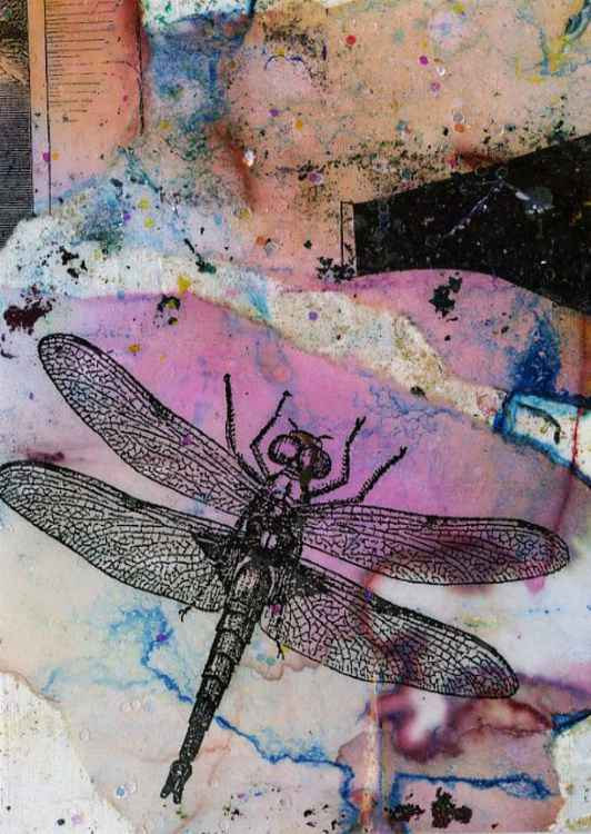 Dragonfly No. 17