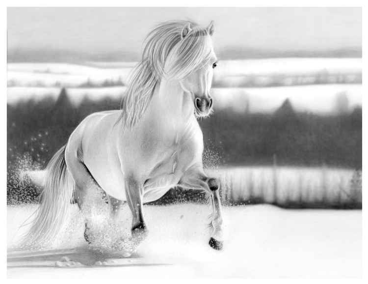 Fun in the snow - pencil drawing -