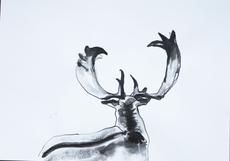 Young Stag (medium) - Image 0