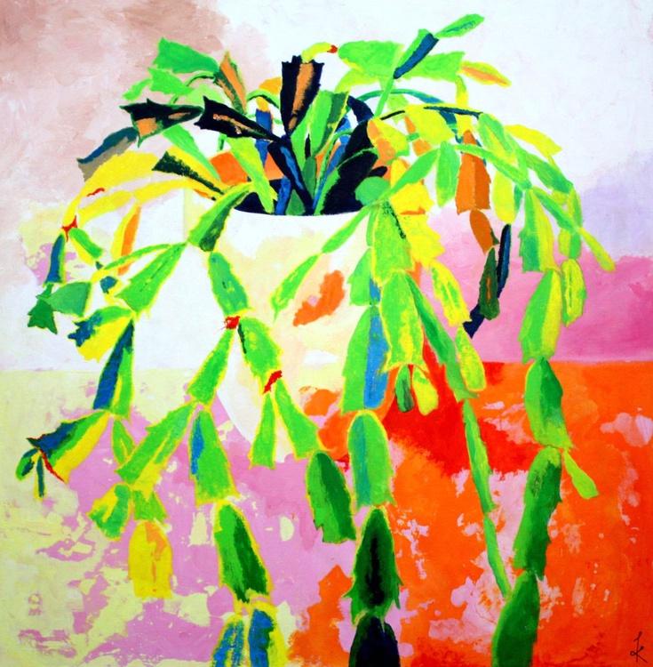 Christmas cactus - Image 0