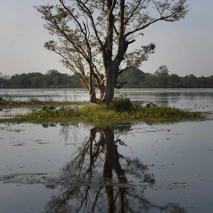 Sri Lanka 0042 - Image 0