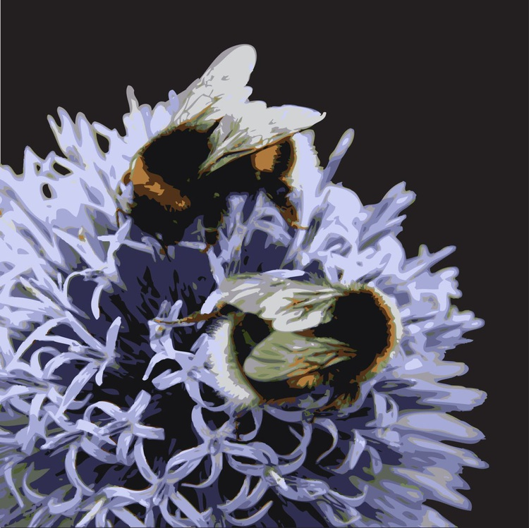 BEES #1 - Image 0