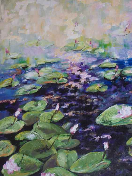 SUMMER SUN AND WATER LILIES