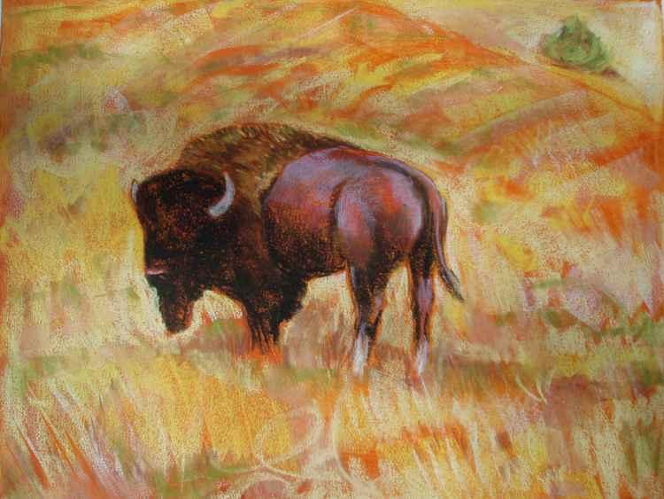 """""""Solitary Buffalo I"""" -"""