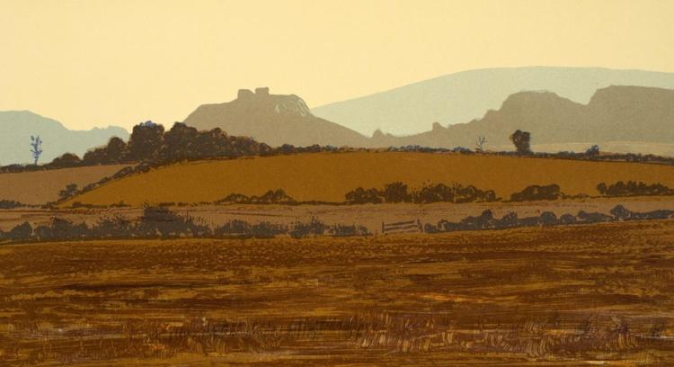 Dunamaise View, Co. Laois - Image 0