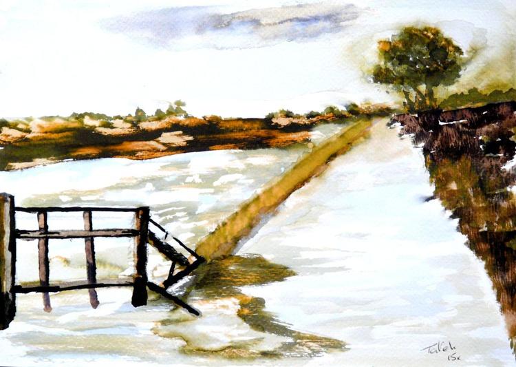 [235] Essex Winter - Image 0