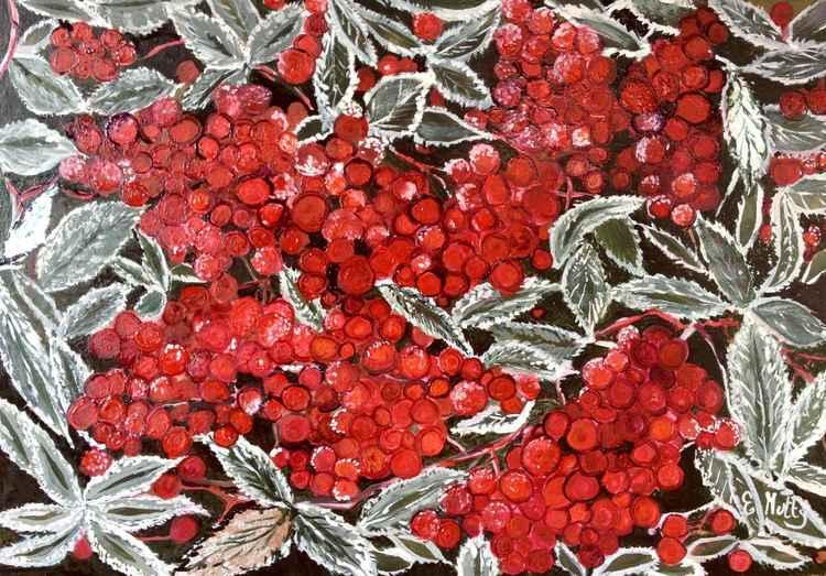 Frozen berries -