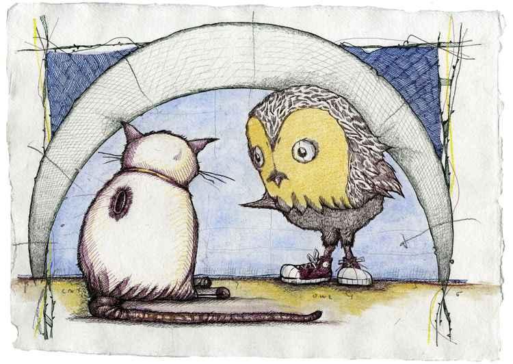 Cat N' Owl -