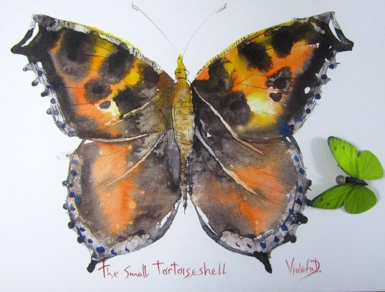 The Small Tortoiseshell (Vanessa Urticae) - Image 0