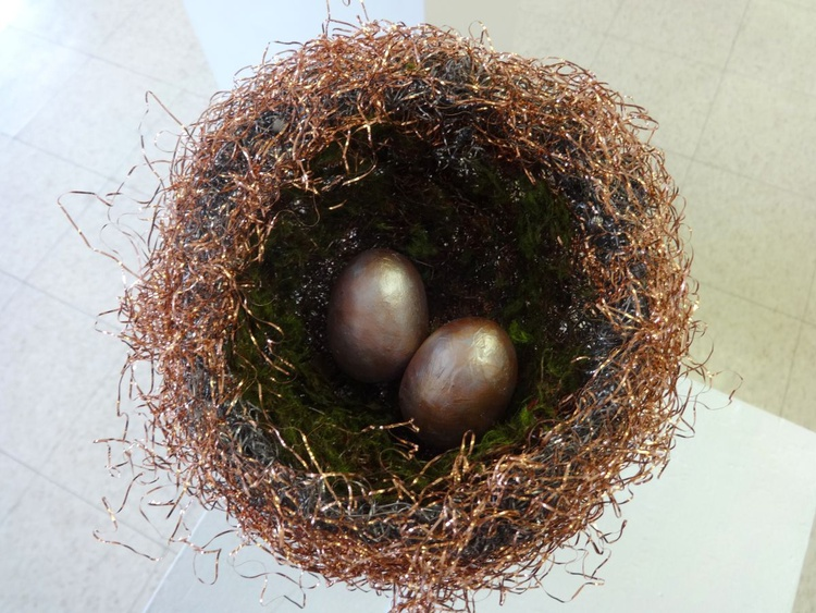 A NEST FOR TWO - Image 0