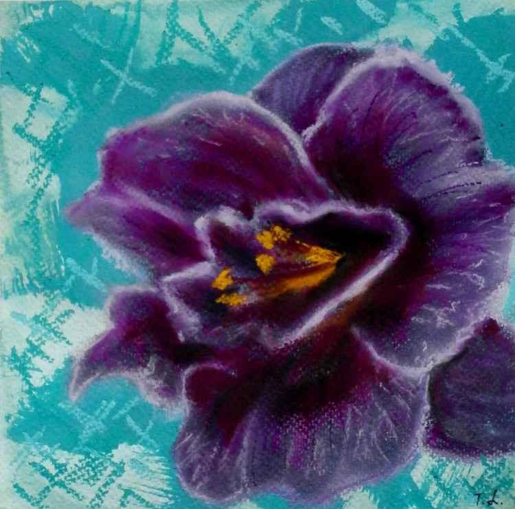 Flowers n4 -