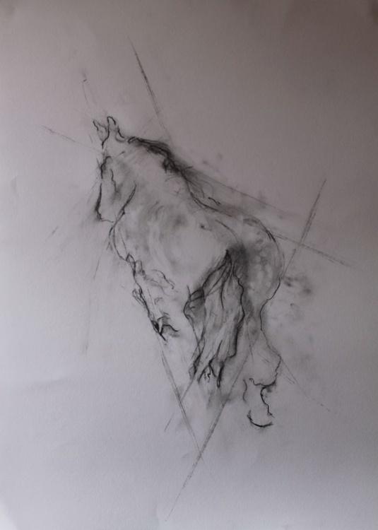 Horse - Image 0