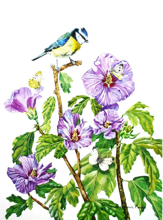 Bluetit and Butterflies - Image 0