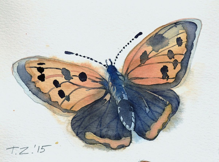 Butterfly Dance - Image 0