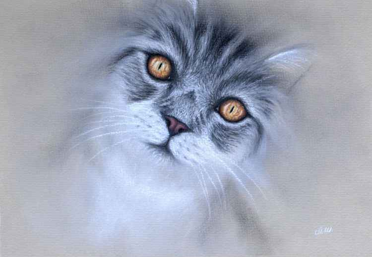 "Original Pastel Drawing ""Amber Eyes"" -"