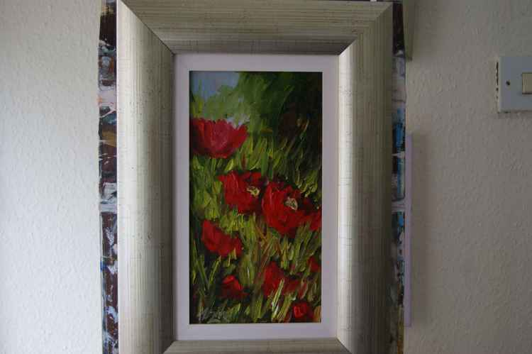 Red Poppies (X15) -