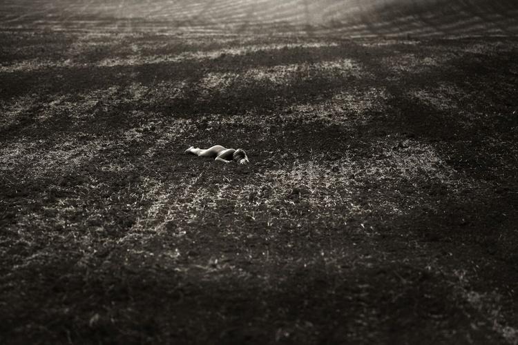 The Fallen - Image 0