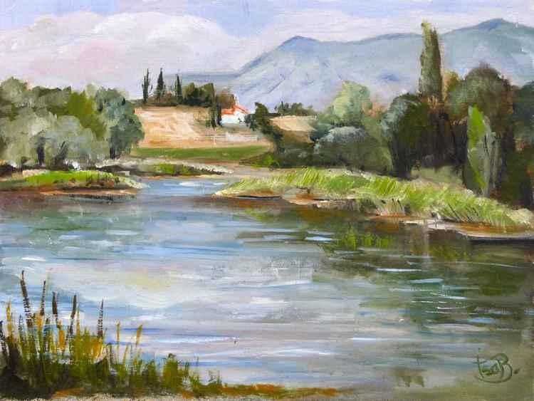 Pond of mison -