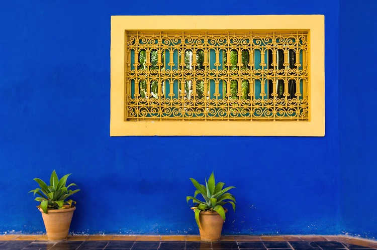 Jardin Majorelle, Marrakech. (42x30cm) - Image 0