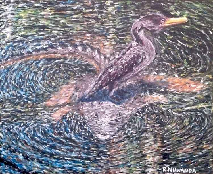 The Anhinga Everglades Look Out -