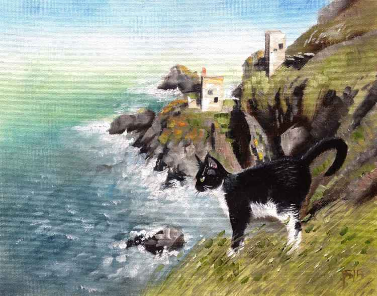 Poldark's Cat -