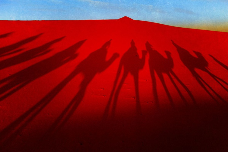 Camel shadows - Image 0